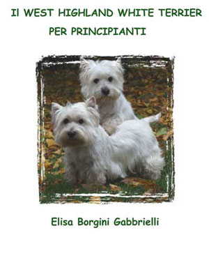 Il West Highland White Terrier per Principianti